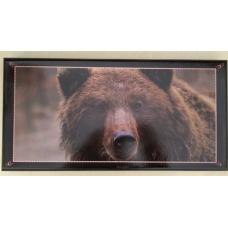 Нарды средние черные, медведь